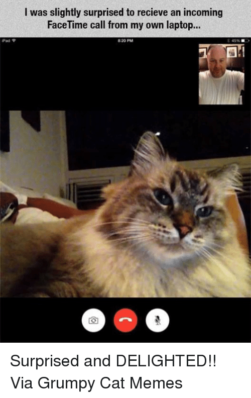 Recieve: Pad  I was slightly surprised to recieve an incoming  FaceTime call from my own laptop... Surprised and DELIGHTED!! Via Grumpy Cat Memes