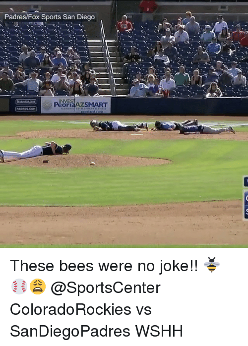 Memes, Sports, and SportsCenter: Padres/Fox Sports San Diego  INVE  SMART  PADRES COM These bees were no joke!! 🐝⚾️😩 @SportsCenter ColoradoRockies vs SanDiegoPadres WSHH