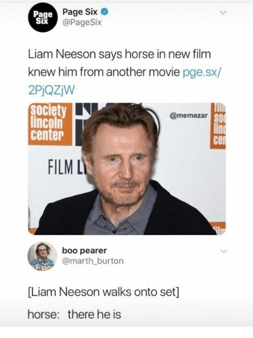 burton: Page  Six  Page Six e  @PageSix  Liam Neeson says horse in new film  knew him from another movie pge.sx/  2PiQZjW  society  lincoln  center  @memezar  SO  FILM L  boo pearer  @marth burton  [Liam Neeson walks onto set]  horse:  there he is