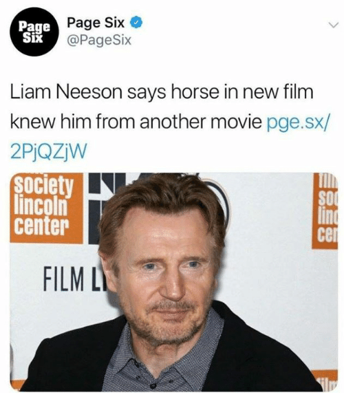 liam neeson: Page  Six  Page Six  @PageSix  Liam Neeson says horse in new film  knew him from another movie pge.sx/  2PjQZW  society  lincoln  center  SO  cel