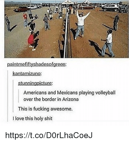 Fucking, Love, and Memes: paintmefiftyshadesofgreen:  stunningpicture  Americans and Mexicans playing volleyball  over the border in Arizona  This is fucking awesome  I love this holy shit https://t.co/D0rLhaCoeJ