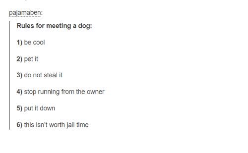 dogged: pajamaben  Rules for meeting a dog:  1) be cool  2) pet it  3) do not steal it  5) put it down  6) this isn't worth jail time