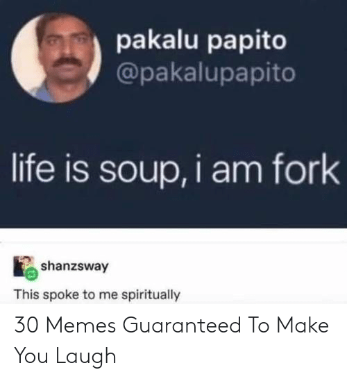 Pakalu Papito: pakalu papito  @pakalupapito  life is soup, i am fork  shanzsway  This spoke to me spiritually 30 Memes Guaranteed To Make You Laugh