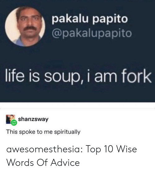 top 10: pakalu papito  @pakalupapito  life is soup, i am fork  shanzsway  This spoke to me spiritually awesomesthesia:  Top 10 Wise Words Of Advice