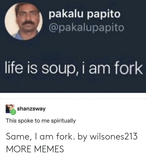 Pakalu Papito: pakalu papito  @pakalupapito  life is soup,i am fork  shanzsway  This spoke to me spiritually Same, I am fork. by wilsones213 MORE MEMES