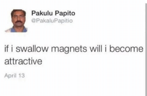 Pakulu Papito: Pakulu Papito  @PakaluPapitio  if i swallow magnets will i become  attractive  April 13