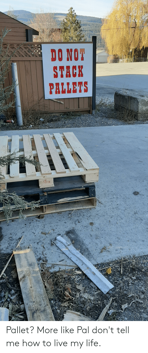 Dont Tell Me How To Live My Life: Pallet? More like Pal don't tell me how to live my life.