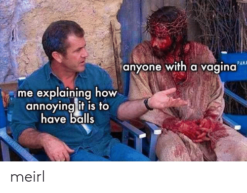 Me Explaining: PAN  anyone with a vagina  me explaining how  annoying it is to  have balls  aylossshoes meirl