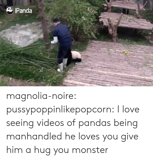 magnolia: Panda magnolia-noire:  pussypoppinlikepopcorn:  I love seeing videos of pandas being manhandled  he loves you give him a hug you monster