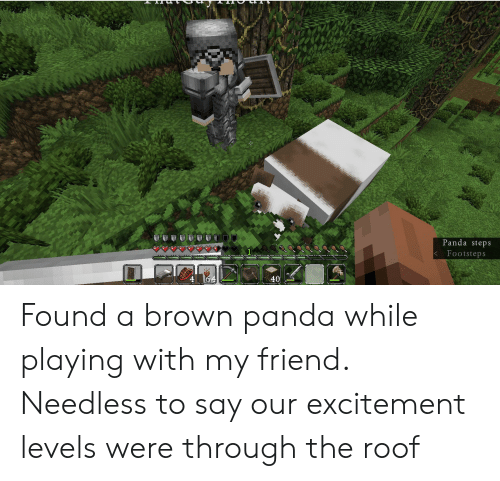 Were Through: Panda steps  Footsteps  <  40 Found a brown panda while playing with my friend. Needless to say our excitement levels were through the roof