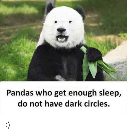 Memes, Panda, and Sleeping: Pandas who get enough sleep,  do not have dark circles. :)
