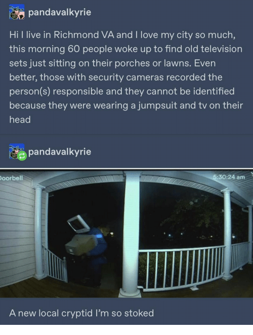 Television: pandavalkyrie  Hi l live in Richmond VA and I love my city so much,  this morning 60 people woke up to find old television  sets just sitting on their porches or lawns. Even  better, those with security cameras recorded the  person(s) responsible and they cannot be identified  because they were wearing ajumpsuit and tv on their  head  pandavalkyrie  Doorbell  5:30:24 am  A new local cryptid l'm so stoked