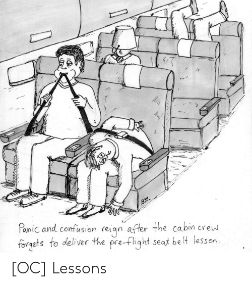crew: Panic and confusion reiqn after the cabin crew  forgets to deliver the pre-flight seat be lt lesson [OC] Lessons