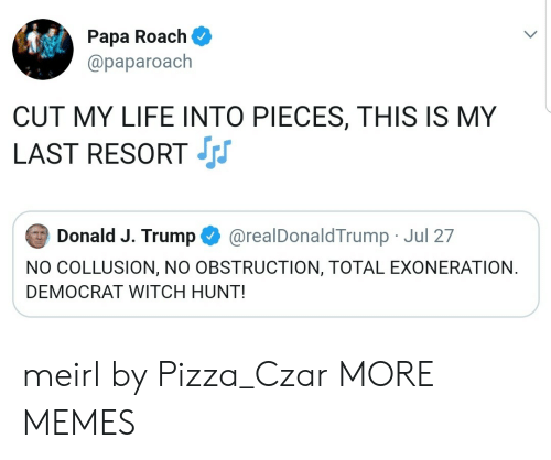 democrat: Papa Roach  @paparoach  CUT MY LIFE INTO PIECES, THIS IS MY  LAST RESORT  Donald J. Trump  @realDonaldTrump Jul 27  NO COLLUSION, NO OBSTRUCTION, TOTAL EXONERATION  DEMOCRAT WITCH HUNT! meirl by Pizza_Czar MORE MEMES