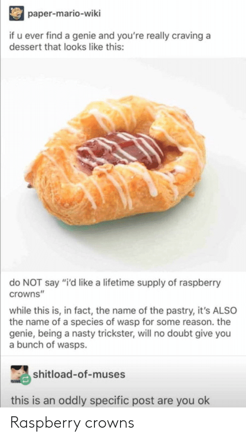 "wasps: paper-mario-wiki  if u ever find a genie and you're really craving a  dessert that looks like this:  do NOT say ""i'd like a lifetime supply of raspberry  crowns""  while this is, in fact, the name of the pastry, it's ALSO  the name of a species of wasp for some reason. the  genie, being a nasty trickster, will no doubt give you  a bunch of wasps.  shitload-of-muses  this is an oddly specific post are you ok Raspberry crowns"