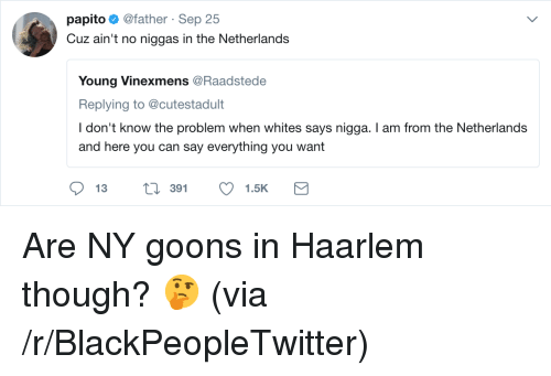 Goons: papito@father Sep 25  Cuz ain't no niggas in the Netherlands  Young Vinexmens @Raadstede  Replying to @cutestadult  I don't know the problem when whites says nigga. I am from the Netherlands  and here you can say everything you want  391 <p>Are NY goons in Haarlem though? 🤔 (via /r/BlackPeopleTwitter)</p>