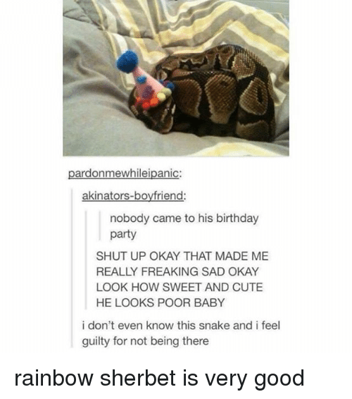 Birthday, Cute, and Memes: pardonmewhileipanic:  akinators-boyfriend  nobody came to his birthday  party  SHUT UP OKAY THAT MADE ME  REALLY FREAKING SAD OKAY  LOOK HOW SWEET AND CUTE  HE LOOKS POOR BABY  i don't even know this snake and i feel  guilty for not being there rainbow sherbet is very good