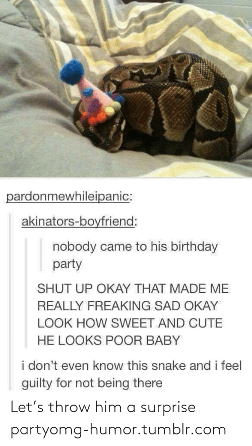 Boyfriend: pardonmewhileipanic:  akinators-boyfriend:  nobody came to his birthday  party  SHUT UP OKAY THAT MADE ME  REALLY FREAKING SAD OKAY  LOOK HOW SWEET AND CUTE  HE LOOKS POOR BABY  i don't even know this snake and i feel  guilty for not being there Let's throw him a surprise partyomg-humor.tumblr.com