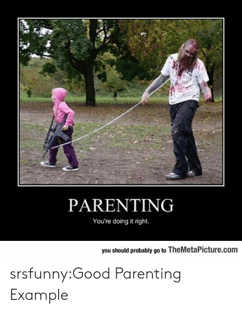 Tumblr, Blog, and Good: PARENTING  You're doing it right.  you should probably go to TheMetaPicture.com srsfunny:Good Parenting Example