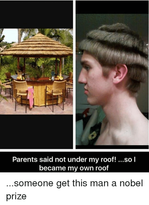 Memes, 🤖, and Own: Parents said not under my roof! ...so l  became my own roof ...someone get this man a nobel prize