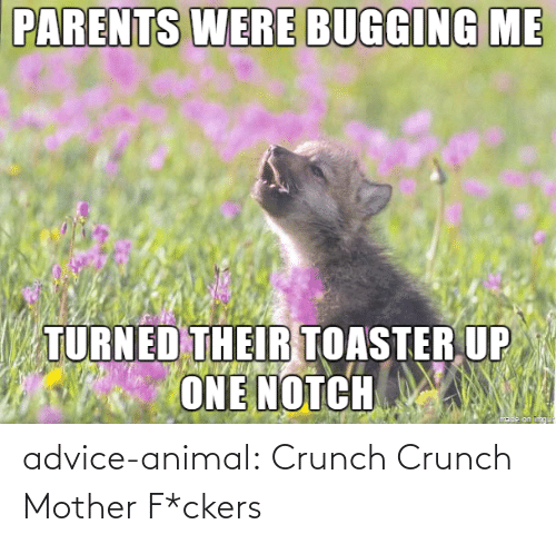 notch: PARENTS WERE BUGGING ME  TURNED THEIR TOASTER UP  ONE NOTCH advice-animal:  Crunch Crunch Mother F*ckers