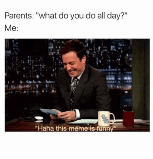 "Meme, Memes, and Parents: Parents: ""what do you do all day?""  ""Haha this meme is funn"