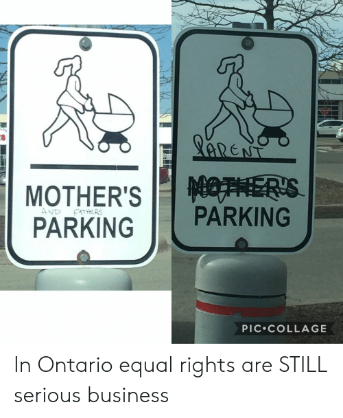 Equal Rights: PARKINGPARKING  PIC.COLLAGE In Ontario equal rights are STILL serious business