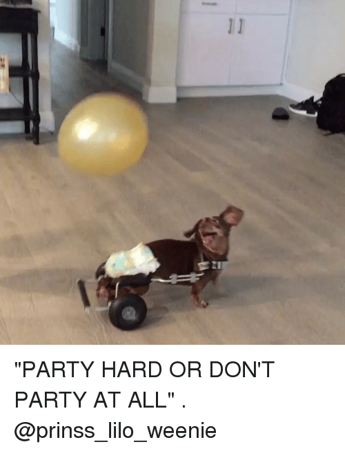 """Memes, Party, and 🤖: """"PARTY HARD OR DON'T PARTY AT ALL"""" . @prinss_lilo_weenie"""