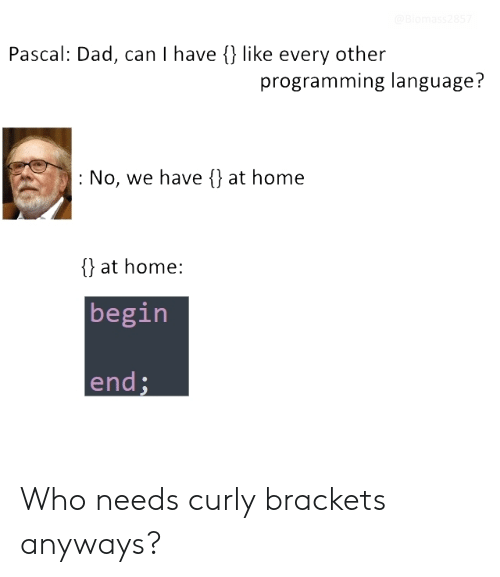 brackets: Pascal: Dad, can I have {) like every other  programming language?  : No, we have {) at home  {} at home:  begin  end Who needs curly brackets anyways?