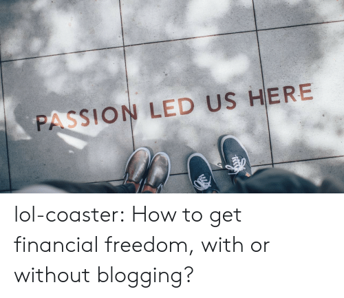 blogging: PASSION LED US HERE lol-coaster:  How to get financial freedom, with or without blogging?