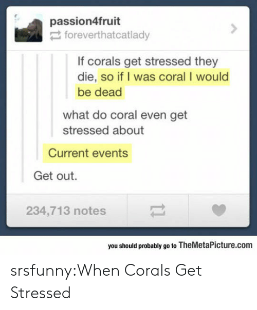 current events: passion4fruit  foreverthatcatlady  If corals get stressed they  die, so if I was coral I would  be dead  what do coral even get  stressed about  Current events  Get out.  234,713 notes  you should probably go to TheMetaPicture.com srsfunny:When Corals Get Stressed