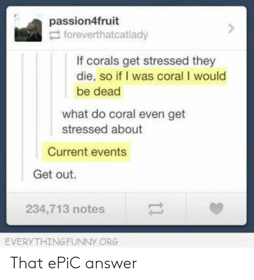 current events: passion4fruit  foreverthatcatlady  If corals get stressed they  die, so if I was coral I would  be dead  what do coral even get  stressed about  Current events  Get out.  234,713 notes  EVERYTHING FUNNy ORG That ePiC answer