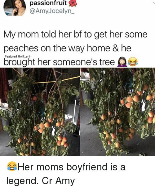Memes, Moms, and Home: passionfruit  @AmyJocelyn  My mom told her bf to get her some  peaches on the way home & he  brought her someone's tree  Featured @will ent 😂Her moms boyfriend is a legend. Cr Amy