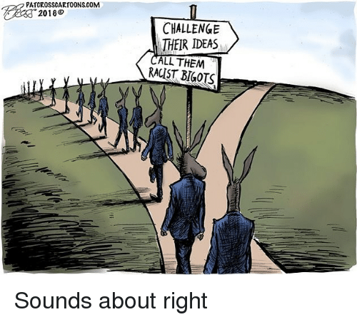 Memes, Racist, and 🤖: PATCROSSCARTOONS.COM  2018  CHALLENGE  THEIR IDEAS  LL THEM  RACIST BIGOTS Sounds about right