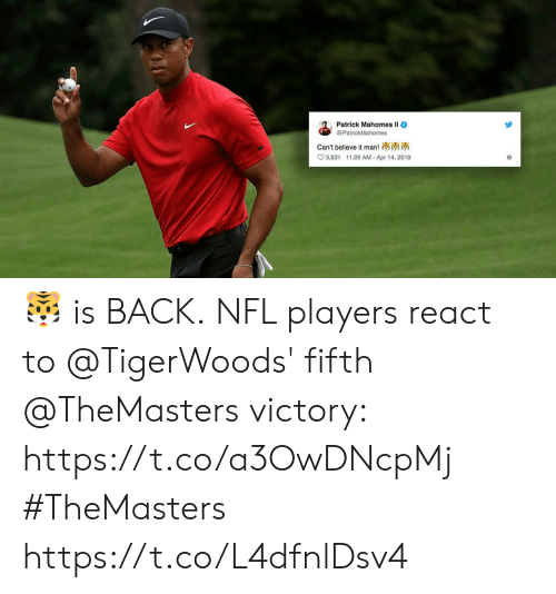 cant-believe-it: Patrick Mahomes ll  @PatrickMahomes  can't believe it man!  3,831 1:29 AM Apr 14, 2019 🐯 is BACK.  NFL players react to @TigerWoods' fifth @TheMasters victory: https://t.co/a3OwDNcpMj #TheMasters https://t.co/L4dfnlDsv4