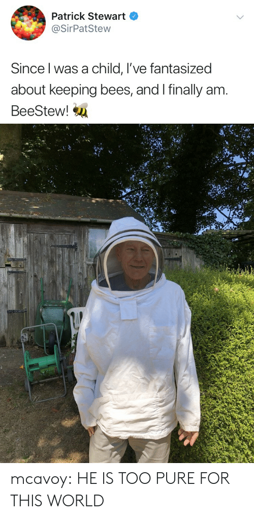 Too Pure: Patrick Stewart  @SirPatStew  Since l was a child, I've fantasized  about keeping bees, and I finally am  BeeStew! mcavoy:  HE IS TOO PURE FOR THIS WORLD