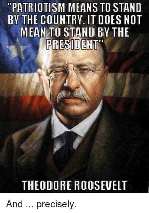 "theodore roosevelt: ""PATRIOTISM MEANS TO STAND  BY THE COUNTRV. IT DOES NOT  MEAN TO STAND BY THE  PRESIDENT""  THEODORE ROOSEVELT And ... precisely."
