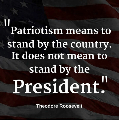 theodore roosevelt: Patriotism means to  stand by the country  It does not mean to  Stand by the  President  Theodore Roosevelt