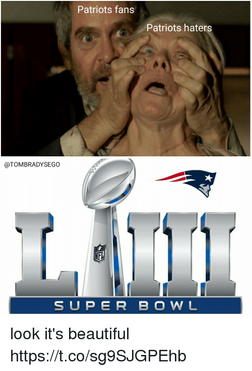 its beautiful: Patriots fans  Patriots haters  @TOMBRADYSEGO  SUPER BO WNL look it's beautiful https://t.co/sg9SJGPEhb