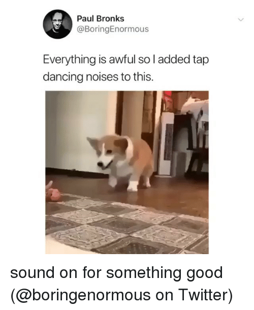 Dancing, Memes, and Twitter: Paul Bronks  @BoringEnormous  Everything is awful so l added tap  dancing noises to this. sound on for something good (@boringenormous on Twitter)