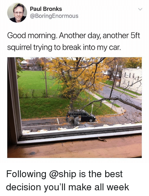 Good Morning, Best, and Break: Paul Bronks  @BoringEnormous  Good morning. Another day, another 5ft  squirrel trying to break into my car.  LIL Following @ship is the best decision you'll make all week