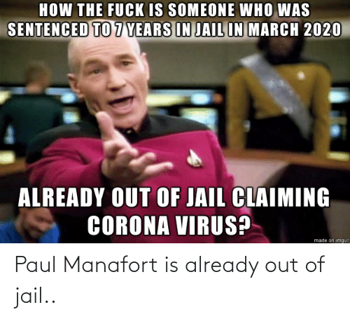 already: Paul Manafort is already out of jail..
