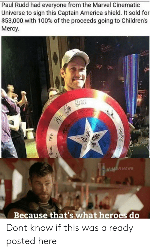 paul rudd: Paul Rudd had everyone from the Marvel Cinematic  Universe to sign this Captain America shield. It sold for  $53,000 with 100% of the proceeds going to Children's  Mercy  Because that's what heroes do Dont know if this was already posted here