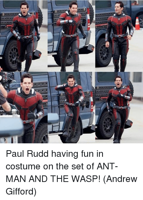 the wasp: Paul Rudd having fun in costume on the set of ANT-MAN AND THE WASP!  (Andrew Gifford)