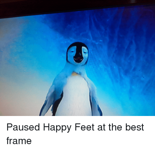 paused happy feet at the best frame 3606367 paused happy feet at the best frame funny meme on sizzle