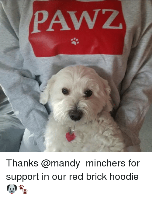 hoody: PAWZ. Thanks @mandy_minchers for support in our red brick hoodie 🐶🐾