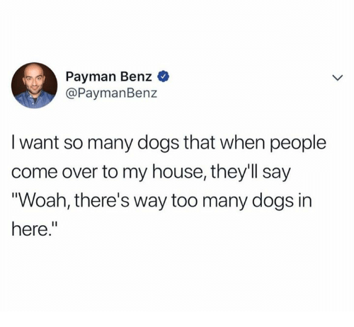 Come Over, Dank, and Dogs: Payman Benz  @PaymanBenz  I want so many dogs that when people  come over to my house, they'll say  Woah, there's way too many dogs in  here.""