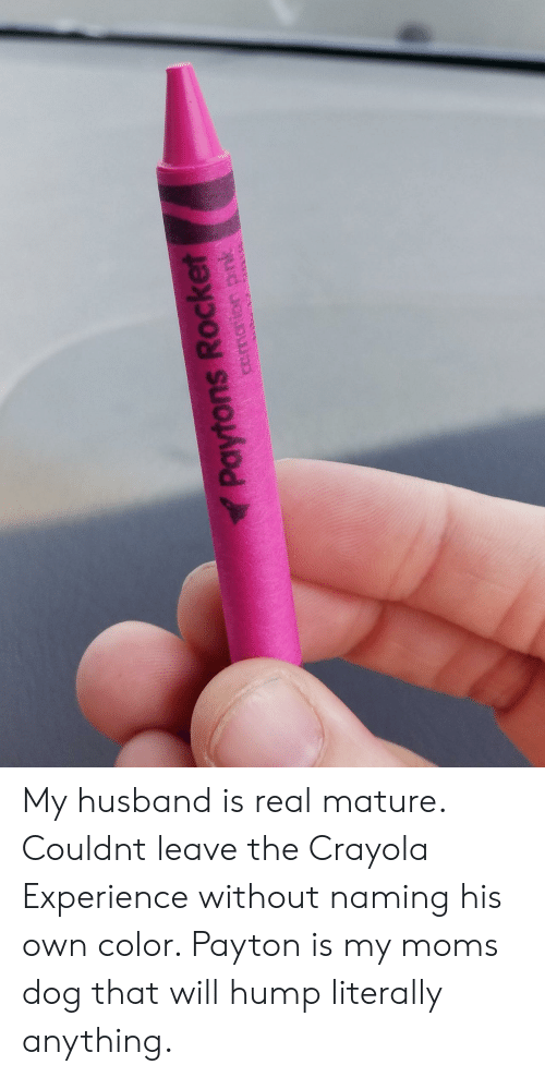 hump: Paytons Rocket My husband is real mature. Couldnt leave the Crayola Experience without naming his own color. Payton is my moms dog that will hump literally anything.