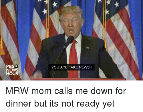 Donald Trump, Fake, and Mrw: PBS'e  YOU ARE FAKE NEWS!!  HOUR  PNH MRW mom calls me down for dinner but its not ready yet
