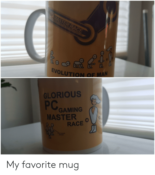 Pc Gaming Master Race: PC MASTER RACE  GH AND OUT TES LOW  EVOLUTION OF MAN  GLORIOUS  PC  GAMING  MASTER  RACE  dety csle  easnt My favorite mug